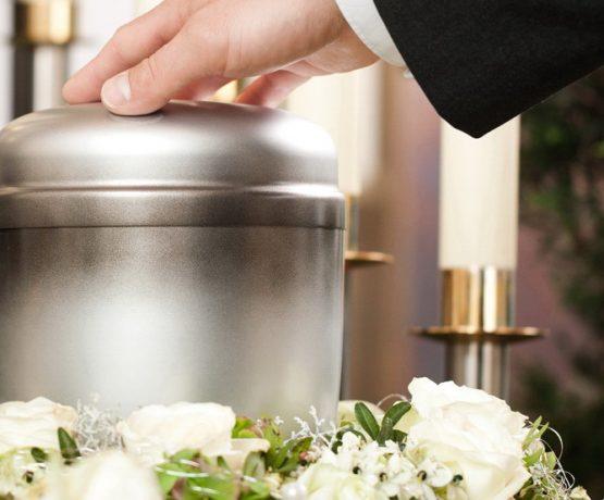 Вартість кремації тварин